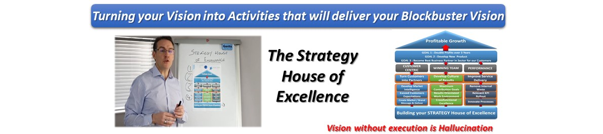 Building Your Strategy House of Excellence